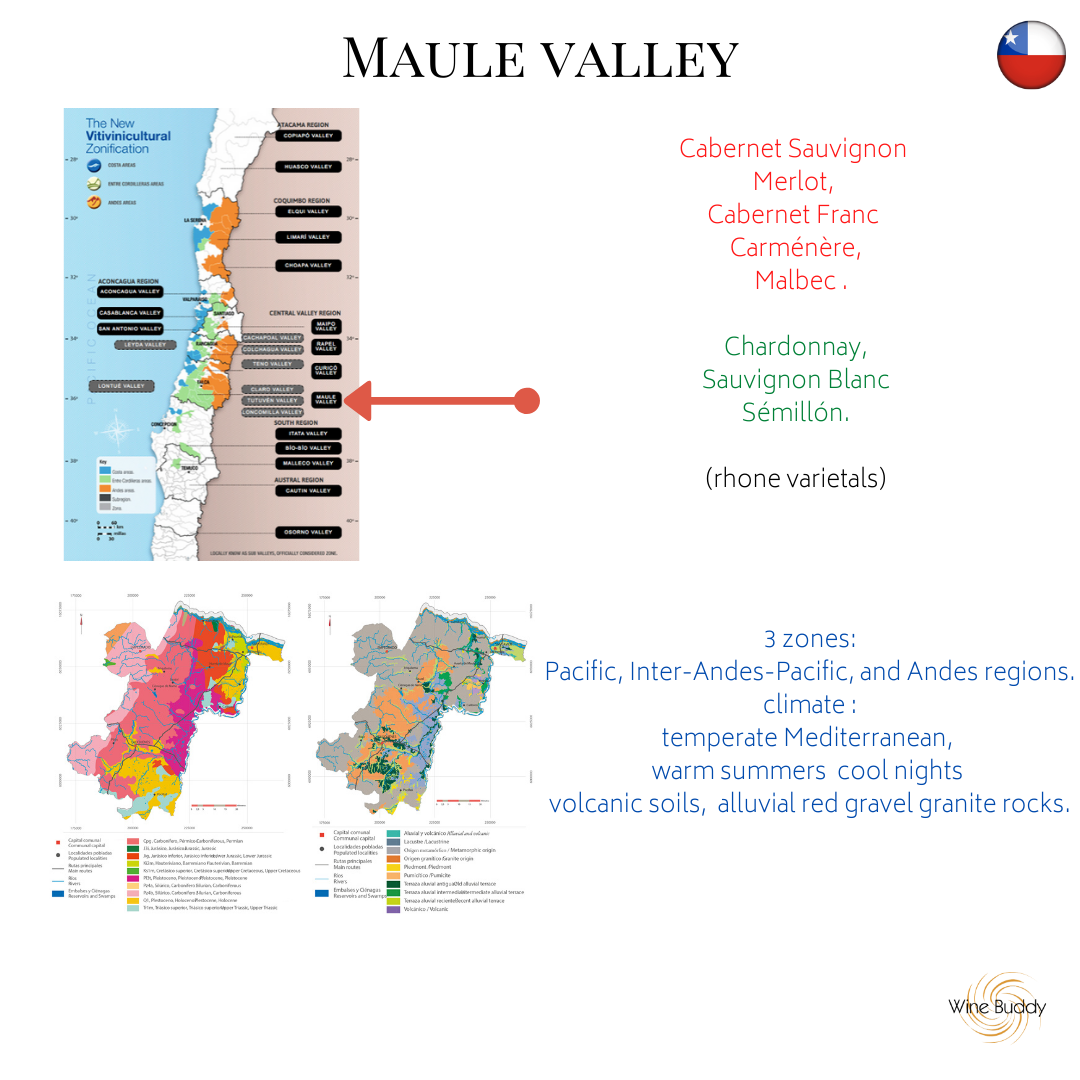 Maule valley